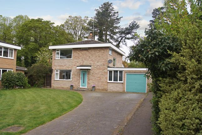 Thumbnail Property for sale in Fountains Road, Bury St. Edmunds