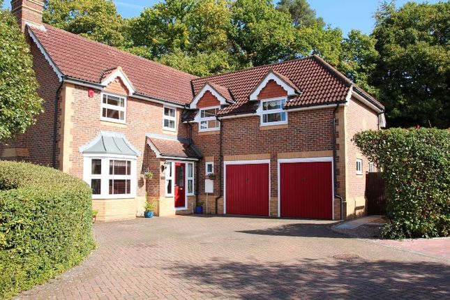 Thumbnail Detached house for sale in Nutfields, Ightham, Sevenoaks