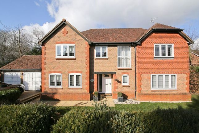 Thumbnail Detached house to rent in Nutfields, Ightham, Sevenoaks