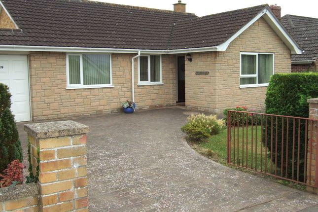 Thumbnail Detached bungalow to rent in Abbey Close, Axminster, Devon