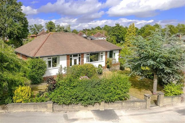 Thumbnail Detached bungalow for sale in Rossett Crescent, Harrogate, North Yorkshire