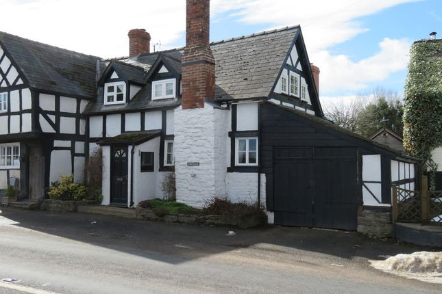 Thumbnail Property to rent in Letton, Hereford