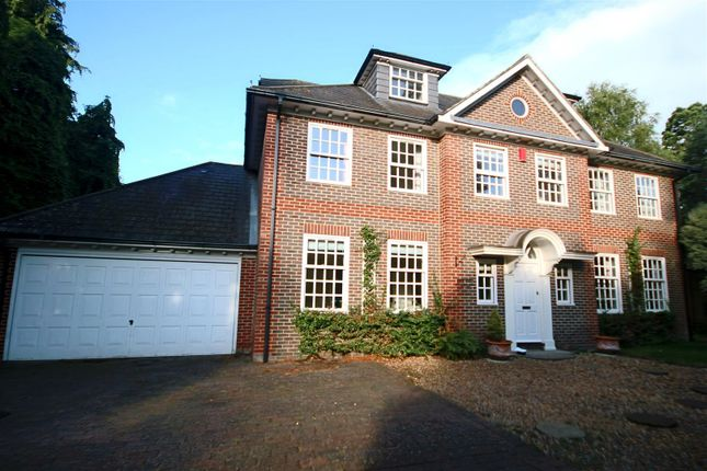 Thumbnail Property to rent in Westrow Road, Shirley, Southampton