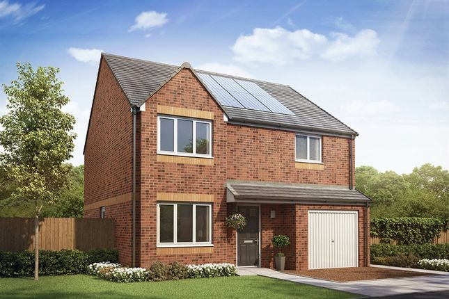 """Thumbnail Detached house for sale in """"The Balerno"""" at Etna Road, Falkirk"""