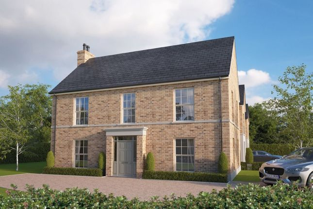 Thumbnail Semi-detached house for sale in The Paige, Mill Bridge, Newtownabbey