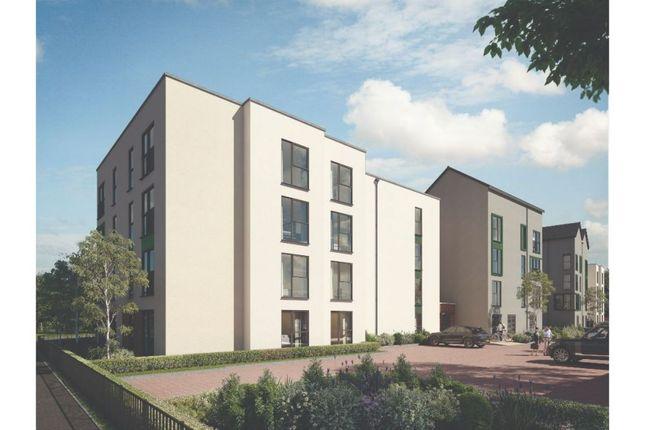 "Thumbnail Duplex for sale in ""The Davoli"" at Foundry Lane, Chippenham"