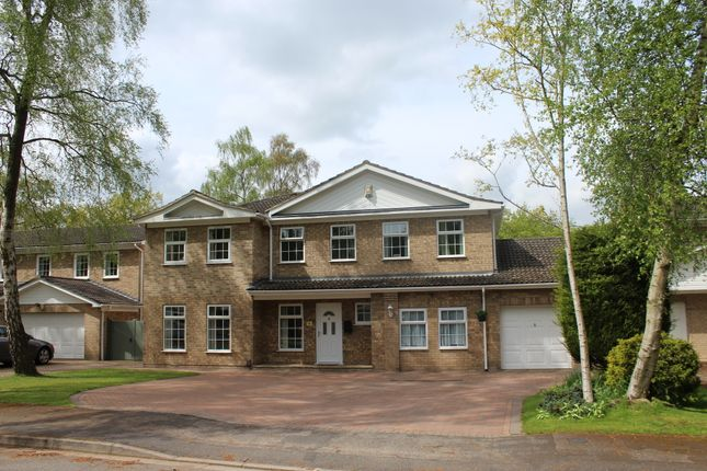 Thumbnail Detached house for sale in Chelsea Close, Lincoln
