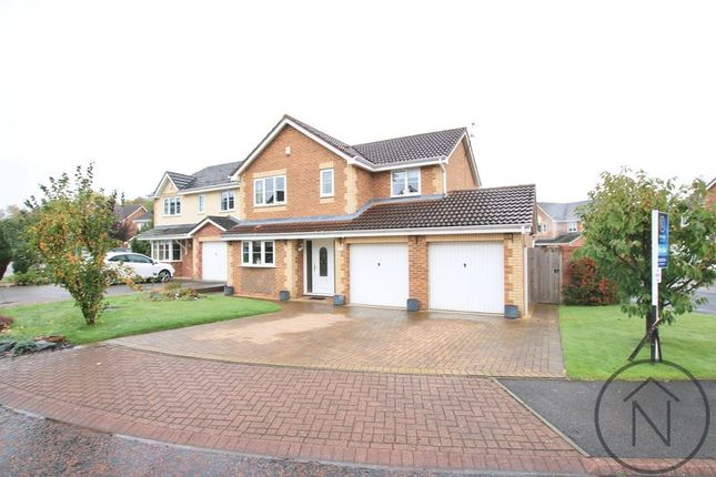 Thumbnail Detached house for sale in Windsor Close, Newton Aycliffe