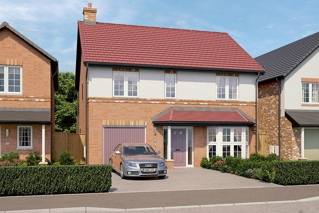 "Thumbnail Detached house for sale in ""The Rosebury"" at Rectory Lane, Guisborough"