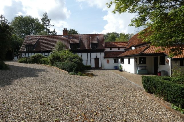 Thumbnail Detached house for sale in Wash Lane, Forncett St Peter, Norfolk