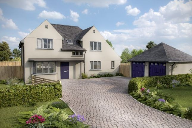 Thumbnail Detached house for sale in South Road, Newton Abbott