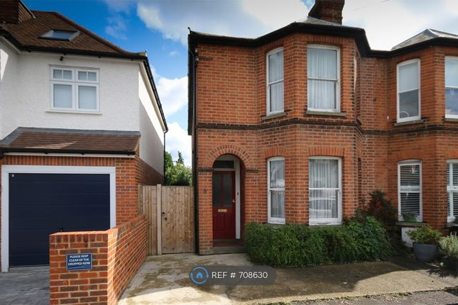 Thumbnail Semi-detached house to rent in Parkhurst Road, Guildford