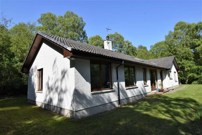 Thumbnail Detached bungalow for sale in Newhall, Balblair, Ross-Shire