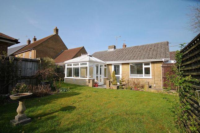 Thumbnail Detached bungalow for sale in Maiden Newton, Dorchester