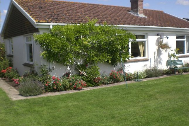 Thumbnail Detached bungalow to rent in Hamlet, Chetnole, Sherborne, Dorset