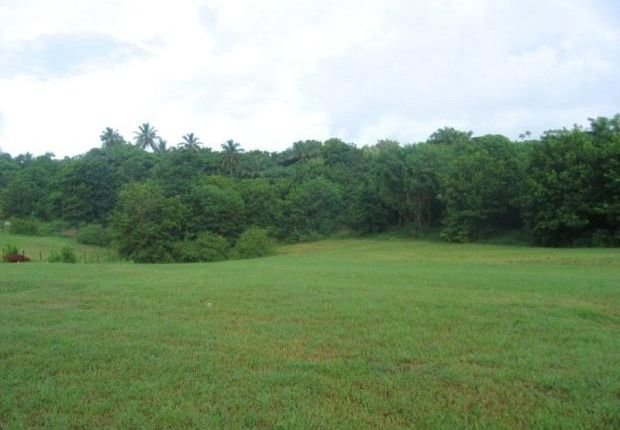 Land for sale in Indian Pond, St Joseph, Barbados