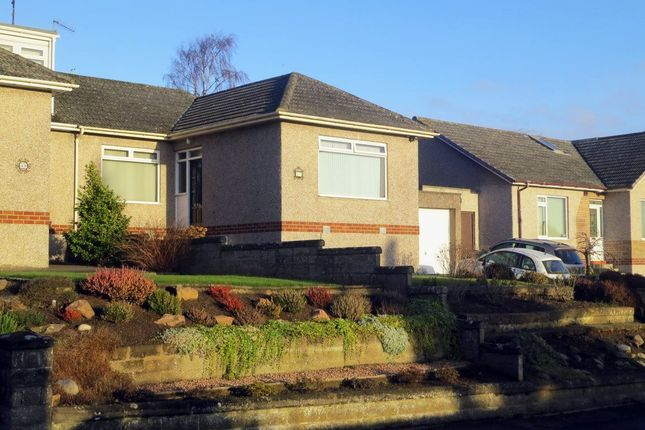 Thumbnail Semi-detached house to rent in Hill Street, Monifieth Dundee, Dundee