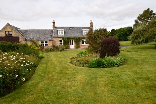 Thumbnail Semi-detached house for sale in Wester Ulston, Jedburgh