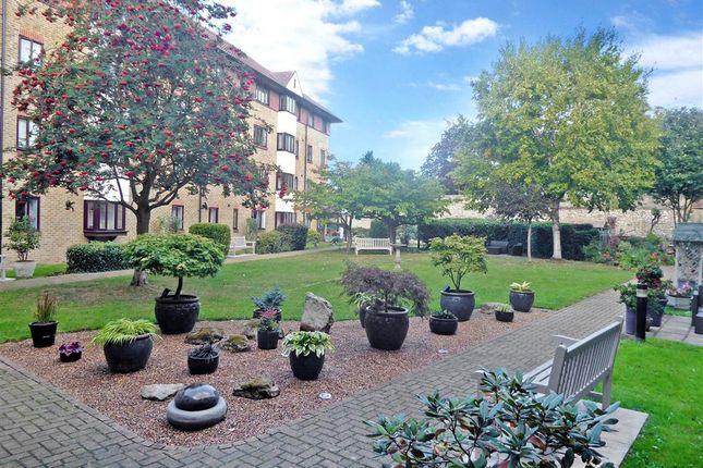 Communal Garden of Union Street, Maidstone, Kent ME14