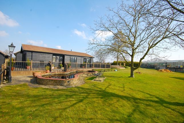 Thumbnail Detached bungalow for sale in Little Totham, Maldon