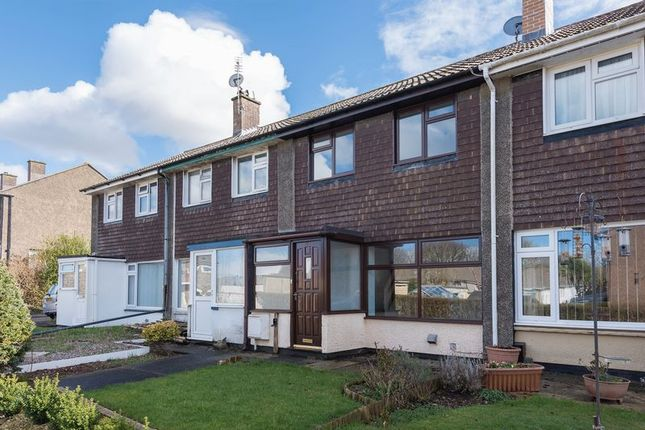 Thumbnail Terraced house for sale in Rosevean Avenue, Camborne
