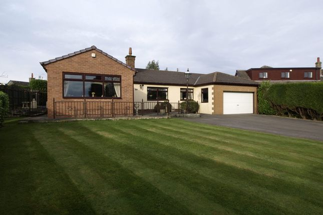 Thumbnail Detached bungalow for sale in Oak Tree Lodge, Denby Lane, Upper Denby
