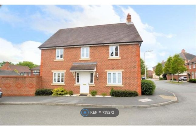 Thumbnail Detached house to rent in Chrysanthemum Drive Shinfield, Reading