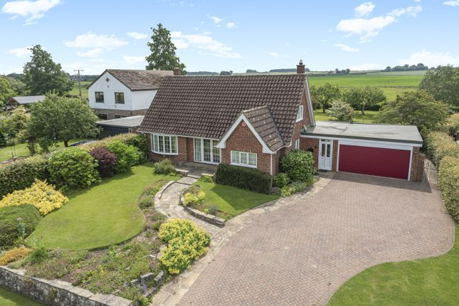 Thumbnail Bungalow for sale in Sapele Lodge, Tockwith Road, Long Marston