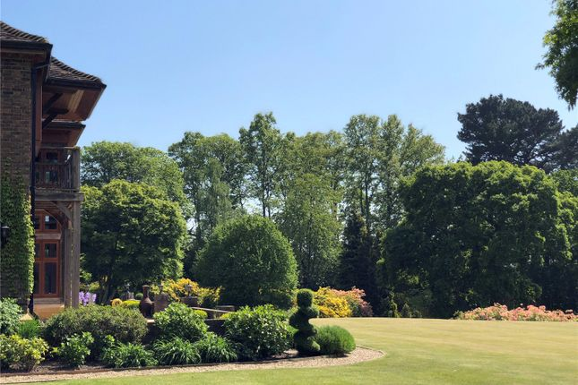 Gardens of Rockford Common, Ringwood, Hampshire BH24