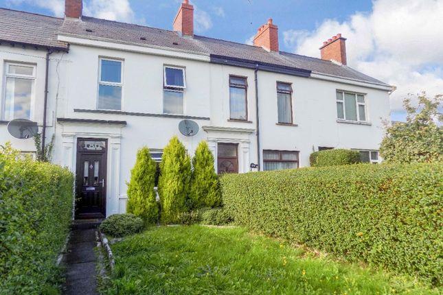 Thumbnail Terraced house to rent in Longstone Street, Lisburn