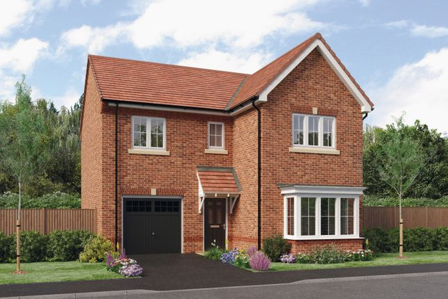 Thumbnail Detached house for sale in The Seeger, Barley Meadows, Cramlington, Northumberland