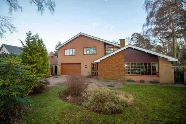 Thumbnail Detached house for sale in The Birches, South Wootton, King's Lynn