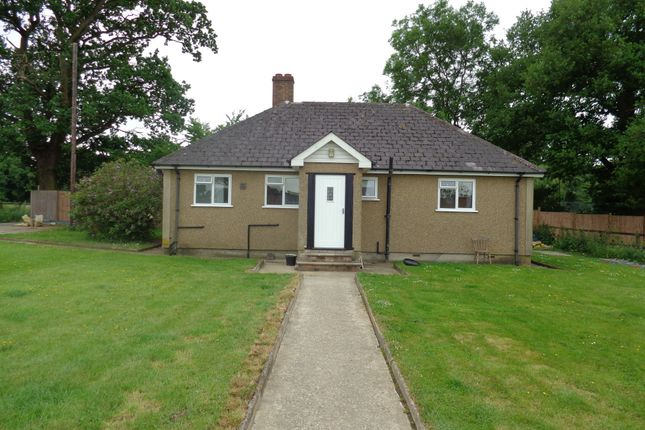 Thumbnail Detached bungalow to rent in Tylers Causeway, Newgatestreet Village, Hertfordshire