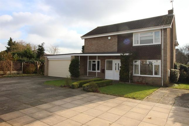 Thumbnail Detached house for sale in Hall Hills, Diss