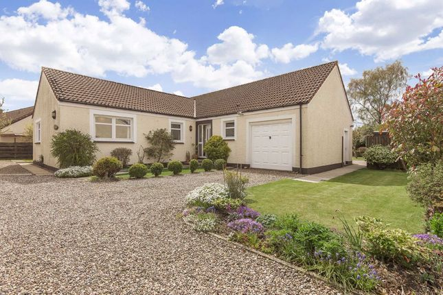 Thumbnail Bungalow for sale in Malt Row, Pitlessie, Fife