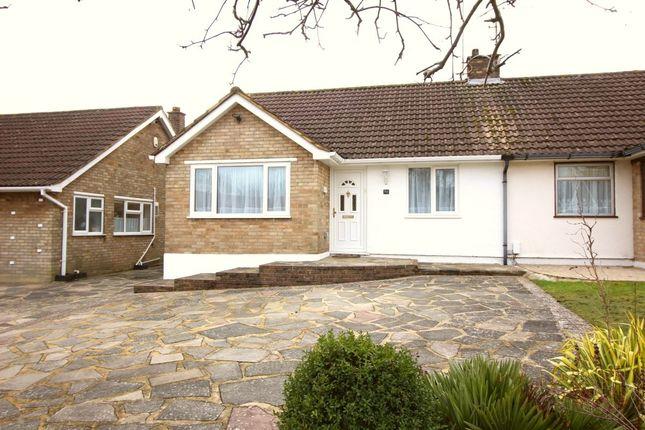 Thumbnail Bungalow to rent in Hilborough Way, Farnborough, Orpington