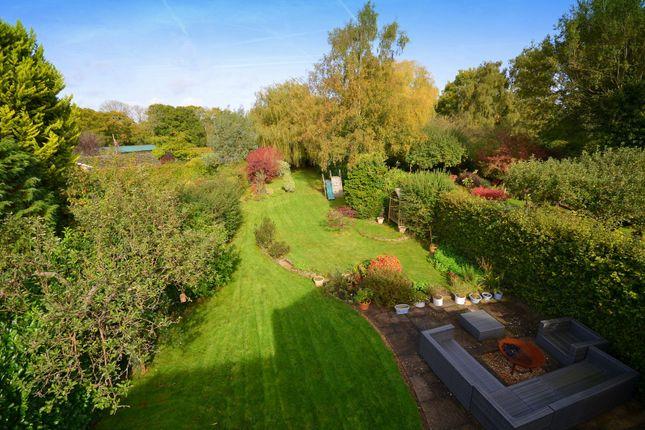 Garden of Cranleigh Road, Ewhurst, Cranleigh GU6