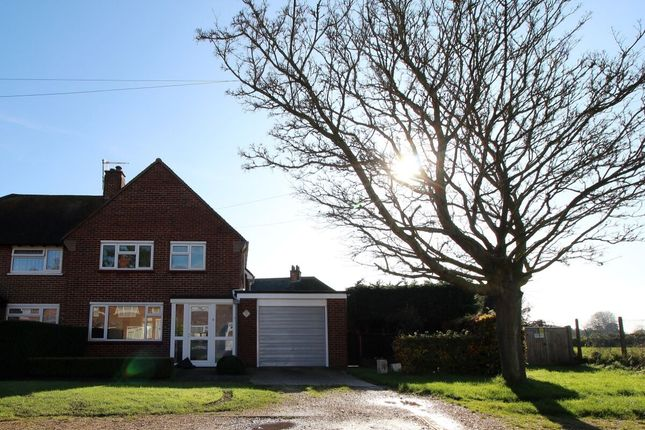 Thumbnail Semi-detached house to rent in Gospond Road, Barnham, Bognor Regis