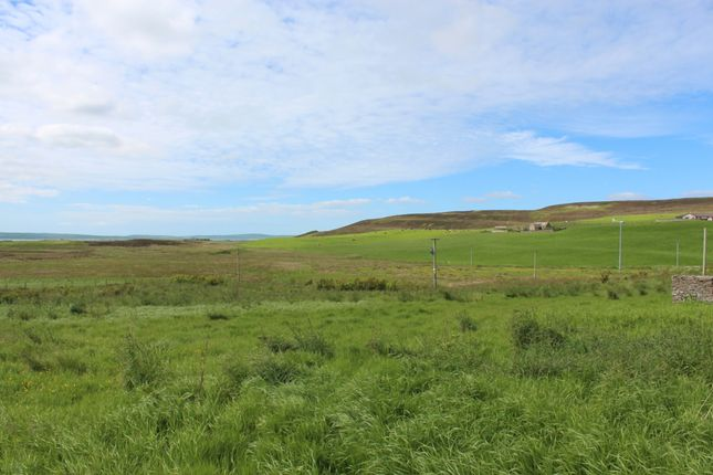Thumbnail Land for sale in Hall Of Heddle (Land Near), Heddle Road, Finstown, Orkney