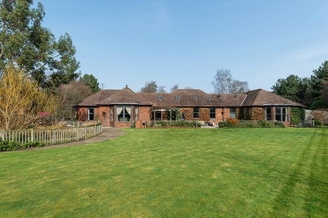 Thumbnail Detached house for sale in Pine House, Park Drive, Hepscott Park, Morpeth, Northumberland