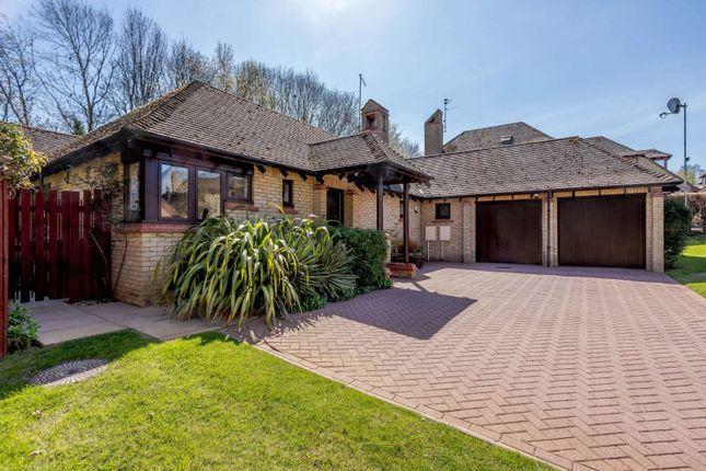 Thumbnail Detached bungalow for sale in Sunningdale, Orton Waterville, Peterborough