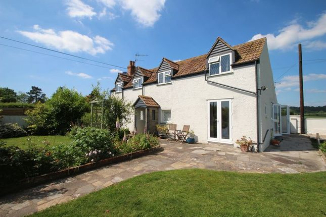 Thumbnail Detached house for sale in Greylake, Bridgwater