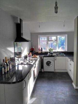 22 Maitland Avenue - Kitchen