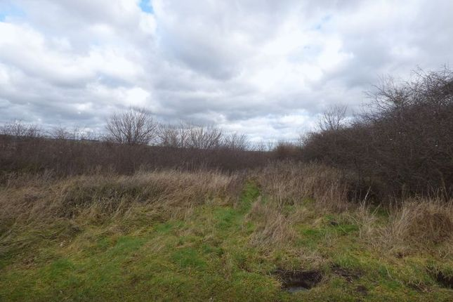Photo 3 of Springvale Road, Brimington, Chesterfield S43