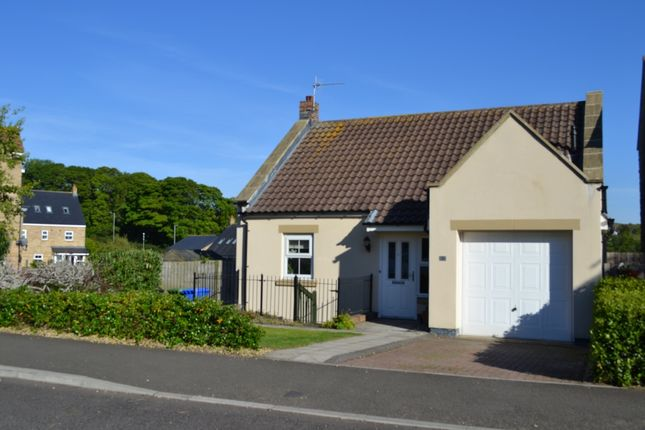 Thumbnail Detached house for sale in Whitton View, Rothbury