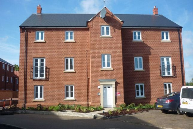 Thumbnail Flat to rent in Kirk Way, Colchester