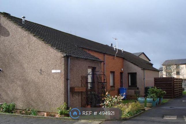 Thumbnail Flat to rent in Sealock Court, Grangemouth