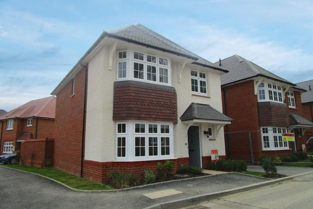 Thumbnail Detached house to rent in Vellum Drive, Archers Park, Sittingbourne