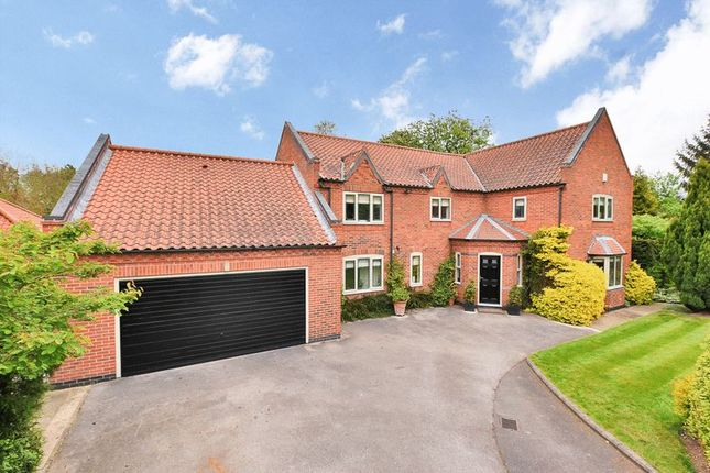 Thumbnail Detached house for sale in Old Hall Close, Wyke Lane, Farndon, Newark