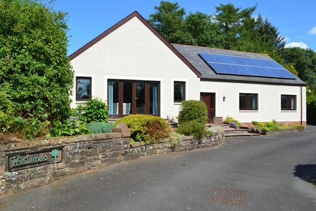 Thumbnail Bungalow for sale in The Limes Underwood, Dumfries, Dumfries And Galloway.